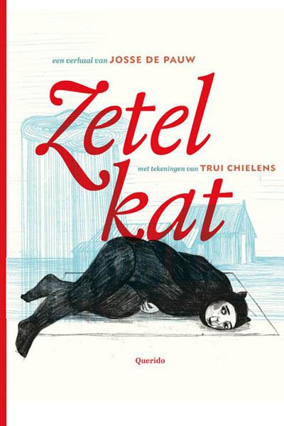 Zetelkat: een ontroerend en lief jeugdboek