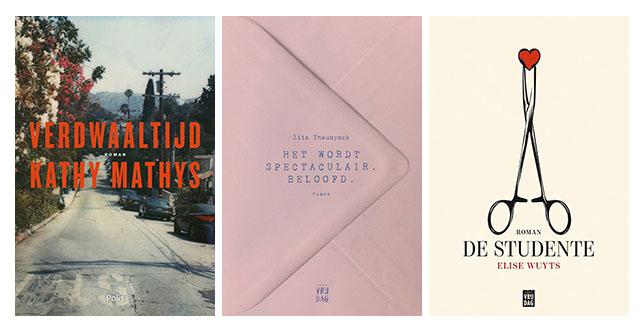 Vlaamse debuutromans