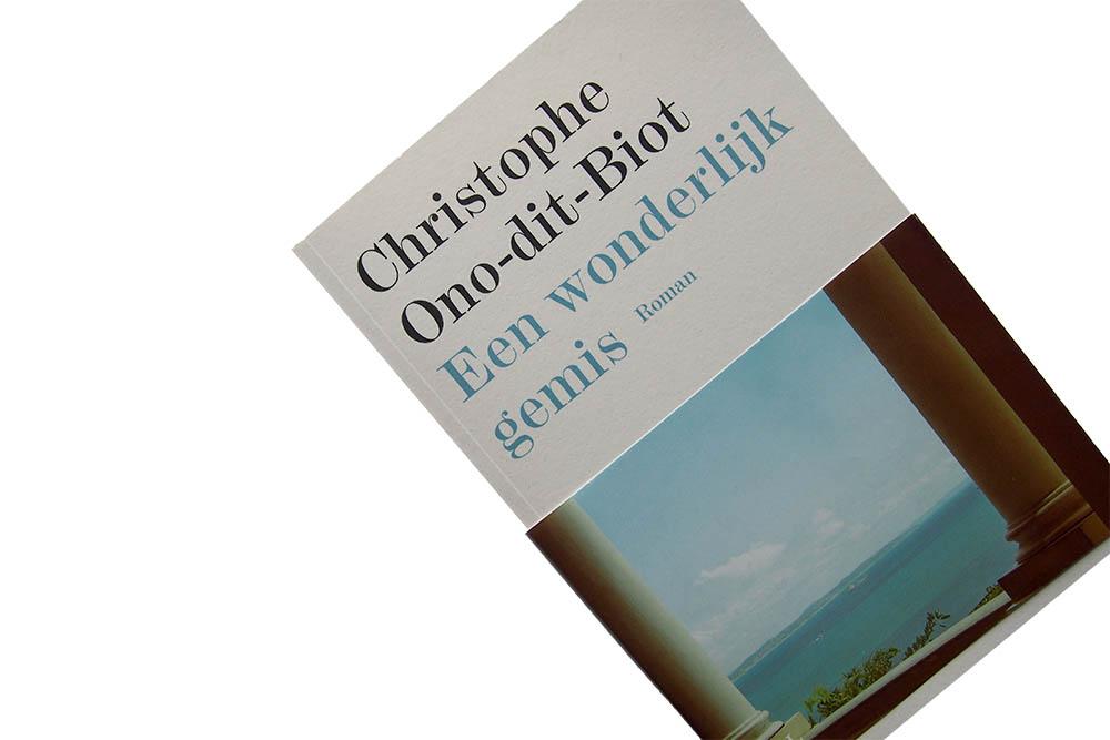 Een wonderlijk gemis - Christophe Ono-dit-Biot
