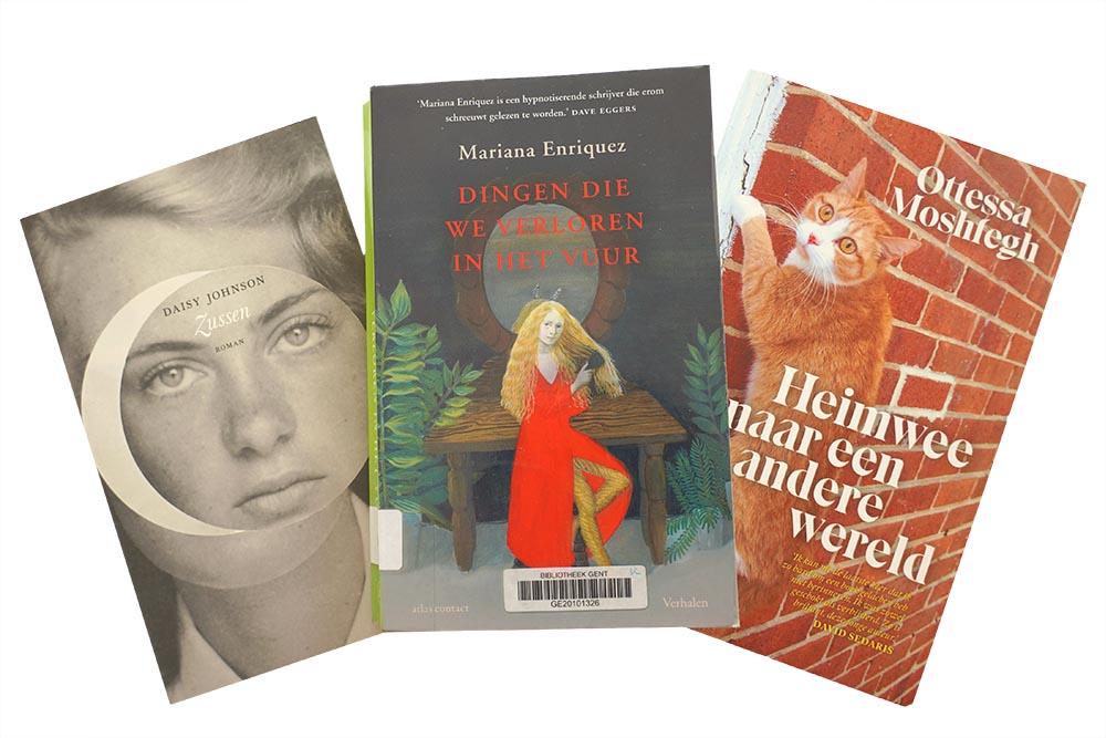 Dingen die we verloren in het vuur - Mariana Enriquez